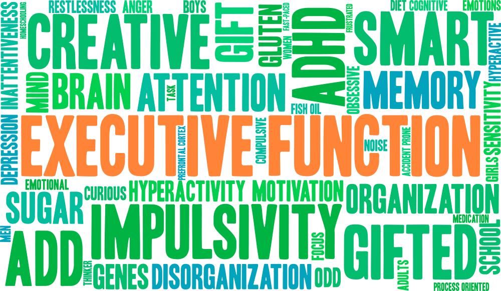 brain cloud executive function